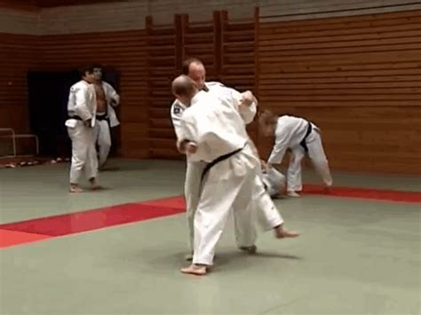 5 Things I Learned from 'Let's Learn Judo with Vladimir